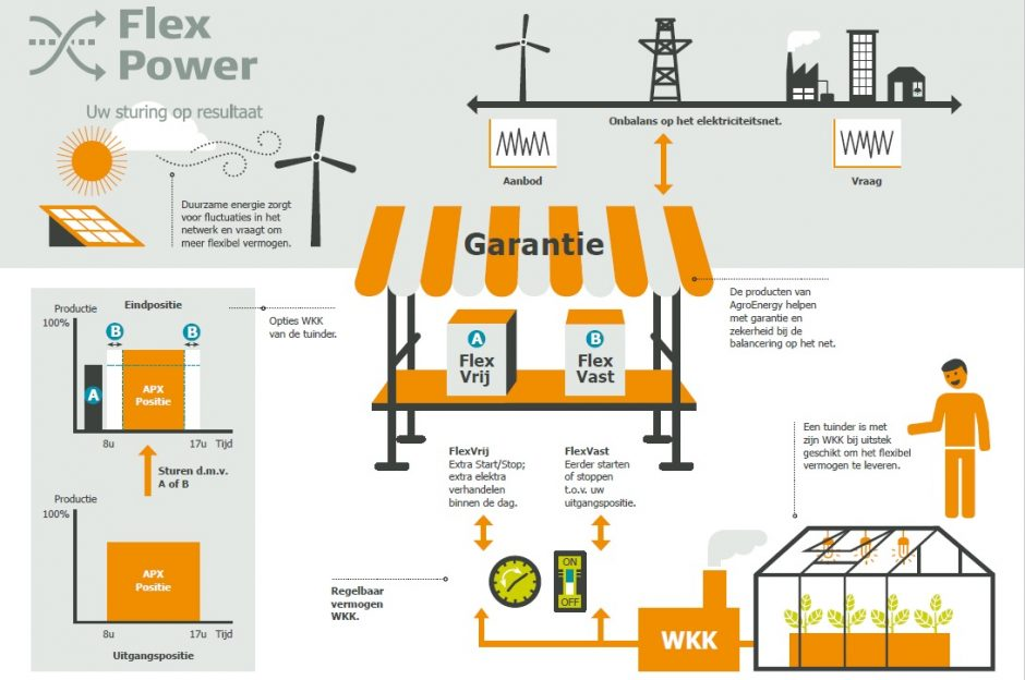 flexpower-infographic