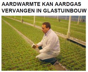 artikel-hollandplant