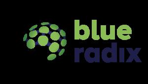 Blue Radix logo
