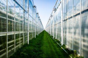 kwaliteitskeurmerk AgroEnergy