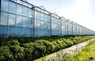 Debiteurenuitkering AgroEnergy