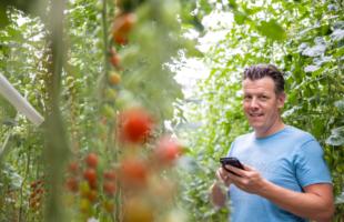 TVA Growers | EnergieBeheer